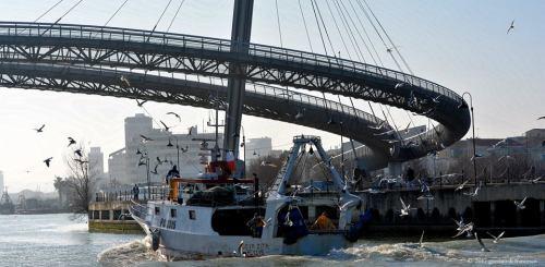 ponte-del-mare